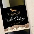 Villa Canlungo Pinot Grigio 2018 Collavini