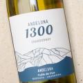 Andeluna '1300' Chardonnay 2019 Mendoza
