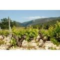 Southern Rhône
